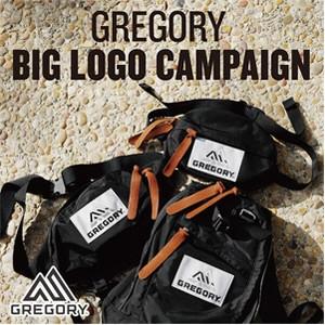Img_gregory_2