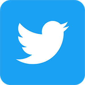 Icon_twitter_2
