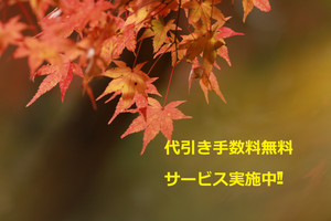Img_5620_2