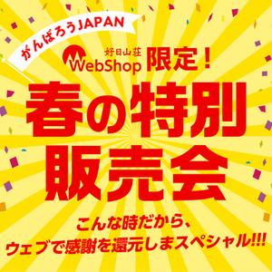 Bnr_2004webharutoku_1040_1040